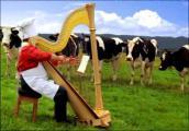 Веселый Молочник - M